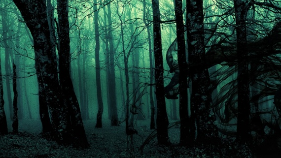 Не ходите в этот лес.